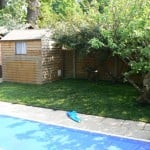 back garden with shed