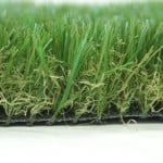 Close up of luxury plus grass