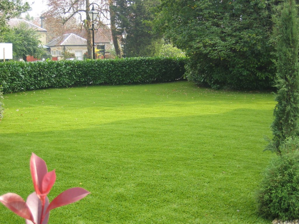 Nomow-artificial-grass-uv