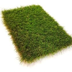 38mm Kingdom Artificial Grass side above